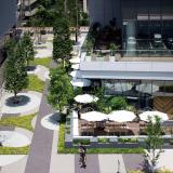 隣接するオープンスペースと多目的広場による緑地空間