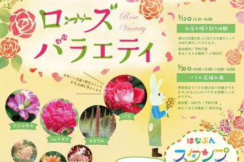 vol13_5kikanshi_print-1